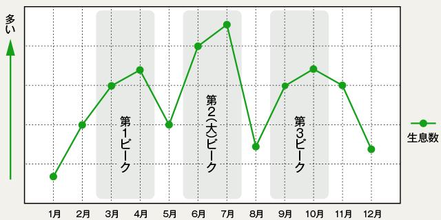 コバエ発生時期グラフ
